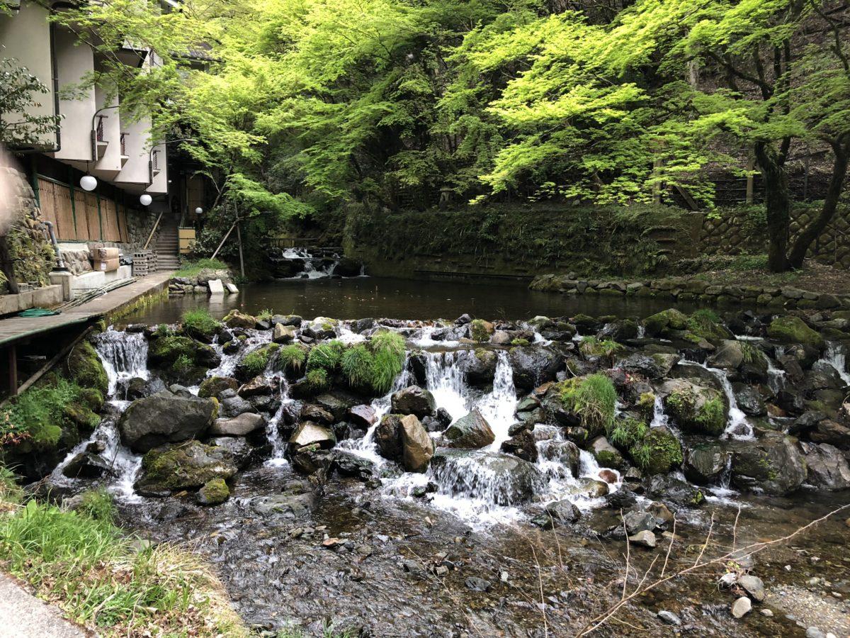 京都・奈良  1日目